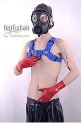 Blue bulldog harness