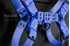 Picture of Blue bulldog harness